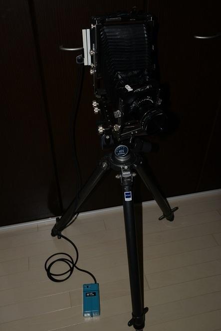 DSC_6003.JPG